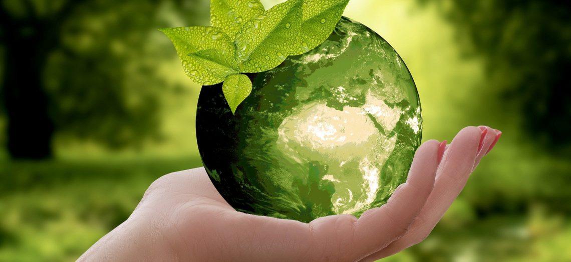 tips para tener un hogar sustentable